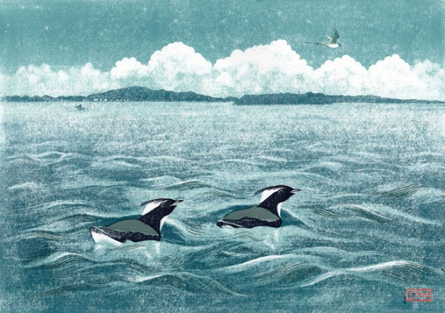城ヶ島沖 Japanese Murrelet カンムリウミスズメ (Linocut and monoprint 2014) © 2014 Narisa Togo.